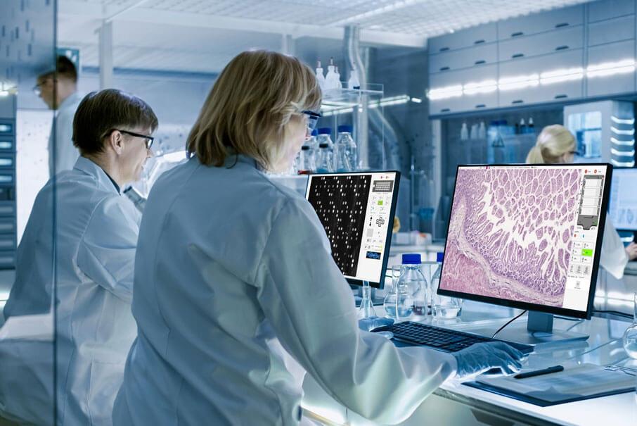 bioinformatics imaging