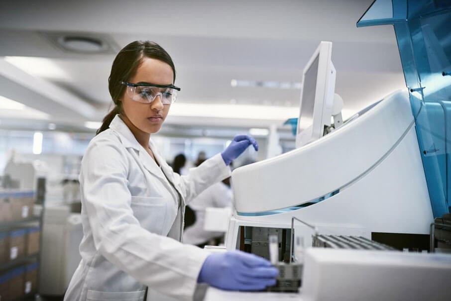 bioinformatics model organisms